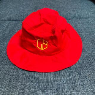 ルース(LUZ)の☆しまじろう様専用☆ ルースイソンブラ  帽子(ウェア)