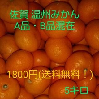 佐賀産 温州みかん 5キロ(フルーツ)