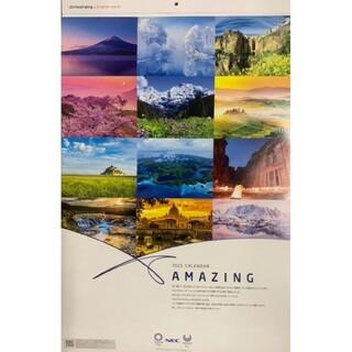 エヌイーシー(NEC)の2021年 NEC カレンダー AMAZING 壁掛け 世界の風景  非売品(カレンダー/スケジュール)