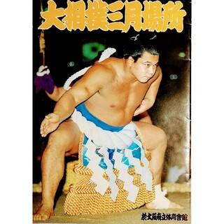 大相撲パンフレット(相撲/武道)