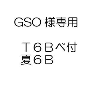 GSO様専用(戦闘服)
