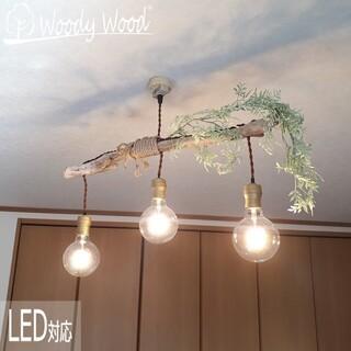 【送料無料】森のペンダントライト227 天井照明 ペンダントライト アンティーク(天井照明)