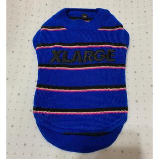 エクストララージ(XLARGE)の難あり エクストララージ XLARGE ボーダー ニット XS ブルー 青 黒(犬)