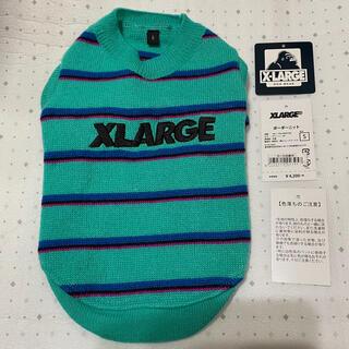 エクストララージ(XLARGE)のエクストララージ XLARGE ボーダー ニット S グリーン 緑 青 黒 桃(犬)