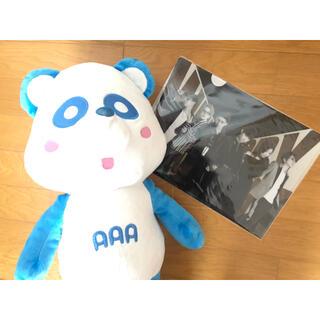 トリプルエー(AAA)のaパンダ(與真司郎)とファイルセット(ぬいぐるみ/人形)