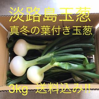 淡路島玉葱 真冬の葉付き新玉葱 3kg(野菜)