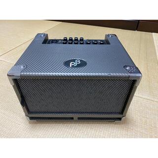 Phil Jones BASS CAB BG-100 美品(ベースアンプ)