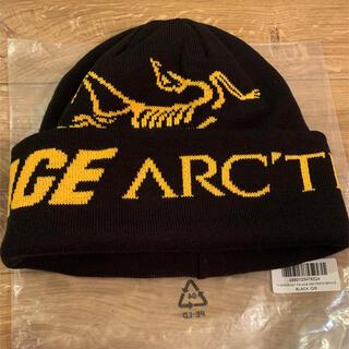 アークテリクス(ARC'TERYX)のPALACE ARCTERYX パレス アークテリクス コラボ ニットキャップ(ニット帽/ビーニー)