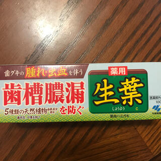 小林製薬 - 生葉 歯磨き粉