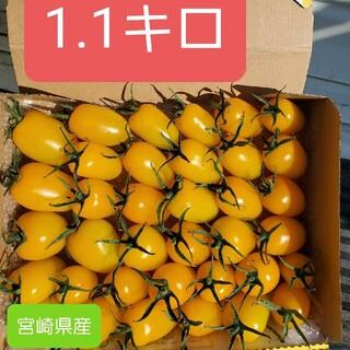 宮崎県産ミニトマトイエローアイコ(野菜)