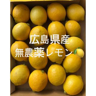 広島県産 無農薬 国産 レモン 小さめのサイズ 17個 産地直送 送料無料(フルーツ)