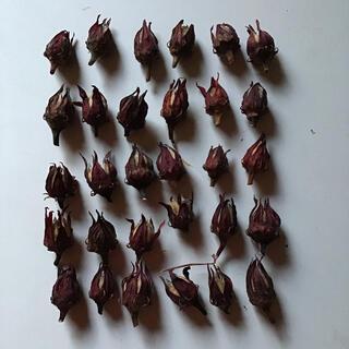 ハイビスカスローゼル無農薬 ドライ 30個(健康茶)