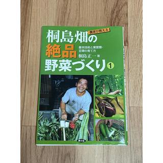 農家が教える桐島畑の絶品野菜づくり 1(趣味/スポーツ/実用)
