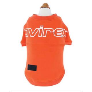 AVIREX(アヴィレックス)オレンジ Lサイズ ビッグロゴスウェット 犬服