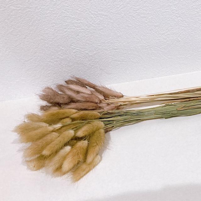 ラグラス ハンドメイドのフラワー/ガーデン(ドライフラワー)の商品写真
