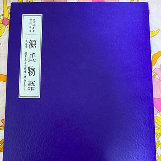 市川海老蔵特別公演 源氏物語第二章 パンフレット(伝統芸能)