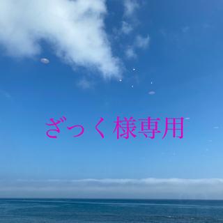 メディコムトイ(MEDICOM TOY)のざっく様 専用ページ(その他)