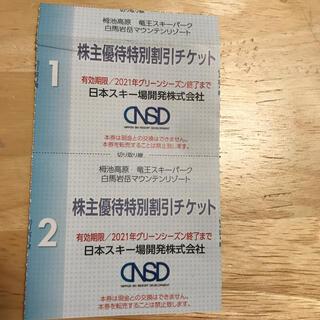 日本スキー場開発 株主優待券(その他)