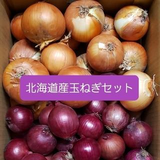 北海道産赤玉ねぎ【アーリーレッド】+玉ねぎセット各5キロ 約10キロ訳あり品(野菜)