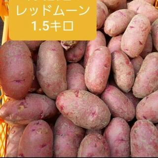 レッドムーン(REDMOON)の北海道産レッドムーン(野菜)