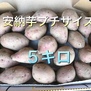 安納芋プチサイズ(野菜)