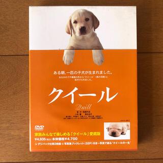 【yuri様専用】クイール DVD(日本映画)