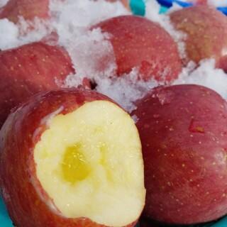数量限定✨雪室りんご  サンふじ家庭用5kg(フルーツ)