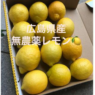 広島県産 無農薬 国産 レモン 産地直送 送料無料(フルーツ)