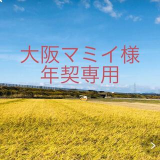 【大阪マミイ様 年契専用〠】令和2年コシ中粒米25kg②ひとめ精米25kg×17(米/穀物)