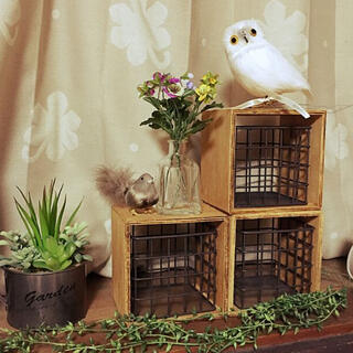 ウニコ(unico)のプエブコ PUEBCOバードオブジェ White Owl白フクロウ横向き(置物)