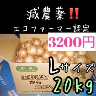 a55 北海道産 減農薬 玉ねぎ Lサイズ 20キロ(野菜)