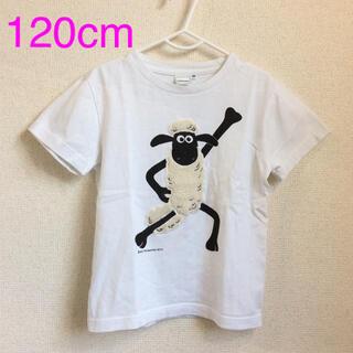 シップスキッズ(SHIPS KIDS)のSHIPS ✖︎ ひつじのショーン コラボTシャツ (g120-37)(Tシャツ/カットソー)