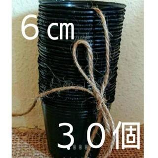 黒ポリポット6cm 30個➕種(その他)
