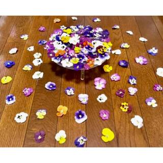 c山盛り70冠‼️銀の紫陽花が作った彩りビオラのドライフラワー(╹◡╹)(ドライフラワー)