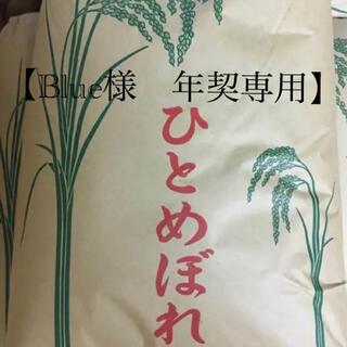 【Blue様 年契専用 1/6以降】令和2年度 ひとめぼれ精米25kg(米/穀物)