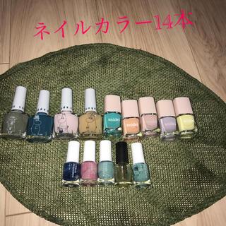 スナイデル(snidel)のネイルカラー 14本 雑誌付録品(マニキュア)