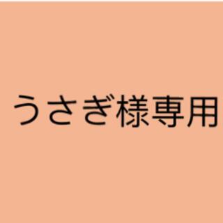 うさぎ様専用(その他)