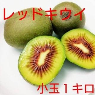 きうぃ様専用【期間限定値下げ!】無農薬!キウイフルーツ【レッドキウイ】1キロ(フルーツ)