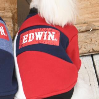 エドウィン(EDWIN)のエドウィン ペット服(犬)