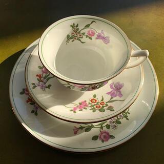エインズレイ(Aynsley China)の【レア❗️】エインズレイ アンティーク1905年〜1925年 (食器)