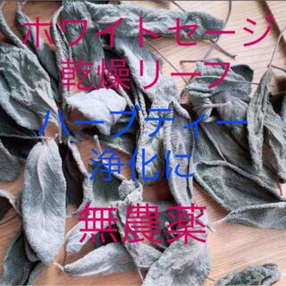 無農薬乾燥ホワイトセージの葉10枚R2年産ハーブ浄化 スピリチュアルハーブティー(茶)
