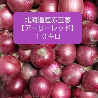 北海道産赤玉ねぎ【アーリーレッド】 Mサイズ 約10キロ(野菜)