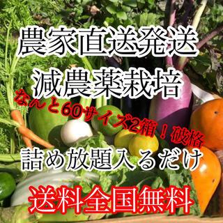 冬野菜詰め合わせ破格60サイズ2箱‼️ダンボール入るだけ(野菜)