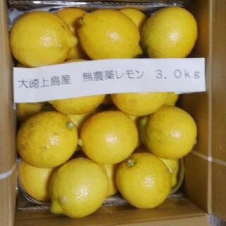 広島県大崎上島無農薬レモン 3.0kg(フルーツ)