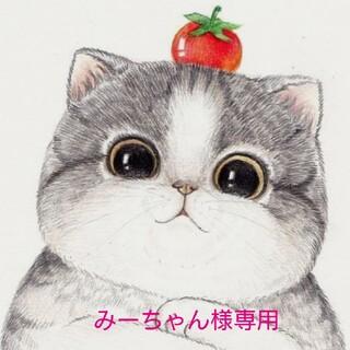 アラシ(嵐)の【みーちゃん様専用】(その他)