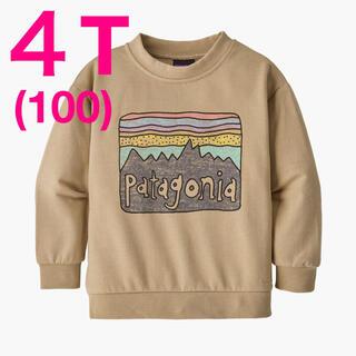 パタゴニア(patagonia)の100サイズ【新品】Patagonia ベビー ライトウェイト スウェット(その他)