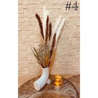 #4 パンパスグラス テールリード ホワイト 10本(ドライフラワー)