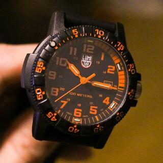 ルミノックス(Luminox)の★期間限定値下げ★LUMINOX 0329 SEA TURTLE(腕時計(アナログ))