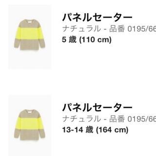 ザラキッズ(ZARA KIDS)の新品 ZARAキッズ 兄弟コーデ 親子コーデ リングコーデ 2枚セット売り(ニット)