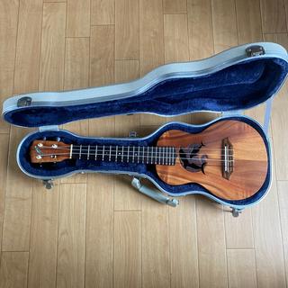 希少 G-strings ウクレレ コンサート ドルフィン(コンサートウクレレ)
